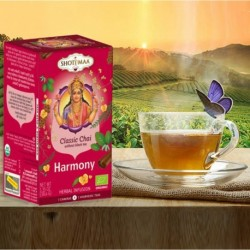 Infusiones CHAKRAS 1-7: Harmony