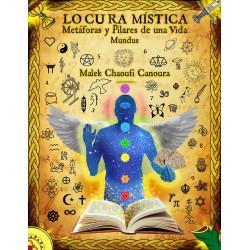 LIBRO LOCURA MISTICA